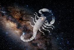 What are Bad Traits of Scorpio Man?